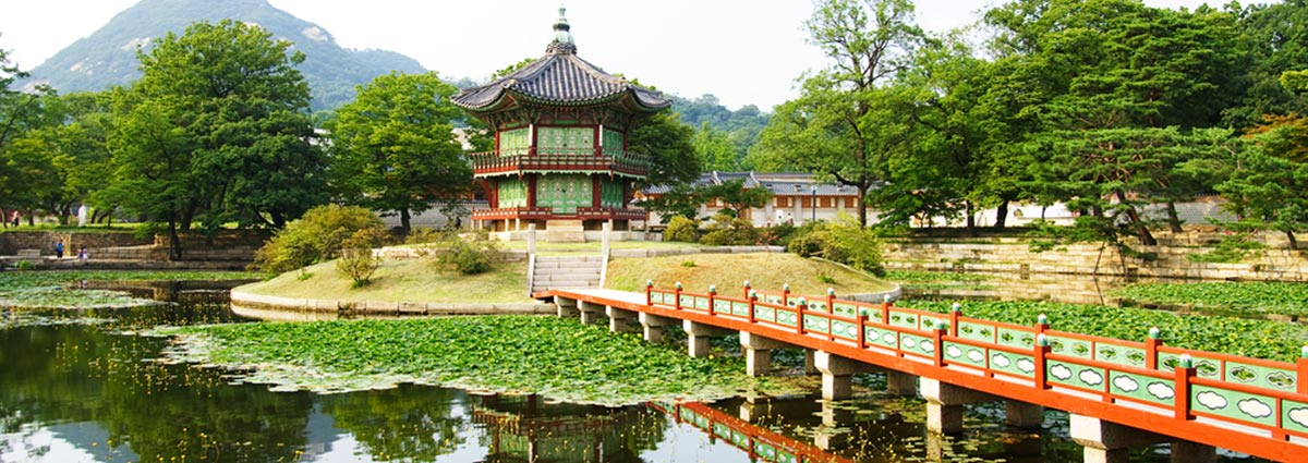 Holiday packages & Hotels in  Seoul